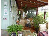 Conservatory looking East
